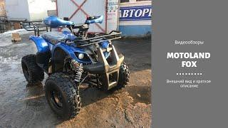 Обзор квадоцикла MOTOLAND FOX 125 2019