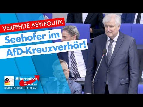 120. Sitzung des Bundestages - AfD-Fraktion im Bundestag