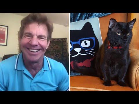 Dennis-Quaid-adopts-Dennis-Quaid-the-cat-in-Lynchburg-Virginia