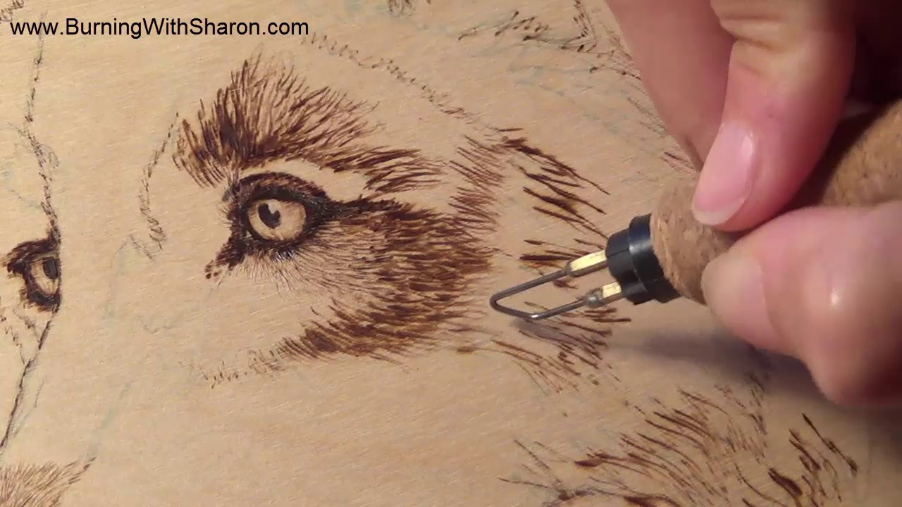 Pyrography Burning Techniques For Wolf Fur Youtube