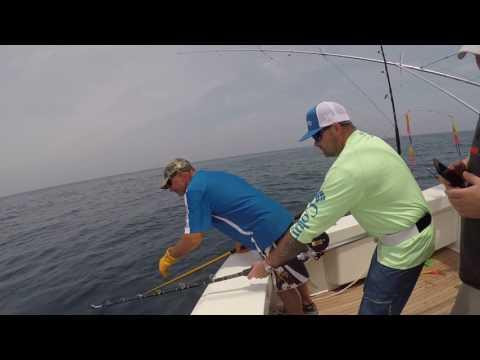 Ocean City Maryland Yellow fin Tuna Fishing