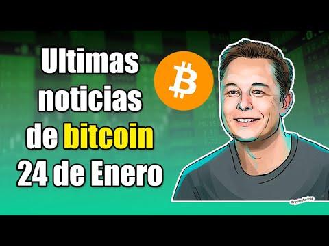 Bitcoin trader elon musk real