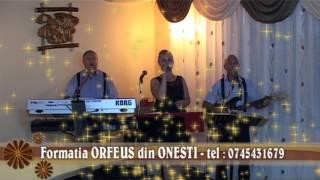 Formatia ORFEUS din ONESTI - SHOW la nunta cu ORFEUS din Onesti Tel 0745431679 clip 26 mkv