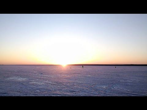 НА ВЕЧЕРНЕГО СУДАЧКА! Рыбалка 2020 со льда продолжается