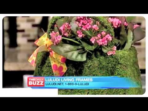 PR Newswire Luludi Gifts