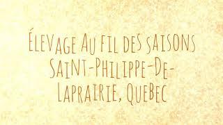 Élevage au fil des saisons Saint-Philippe-de-Laprairie Quebec