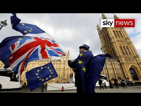 Sky Data poll: Public turning against Brexit
