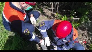 В Спасске-Дальнем спасли собаку провалившуюся в трёхметровый колодец