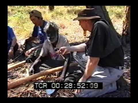 David Blanasi & The White Cockatoo Performing Group - Aboriginal Culture / Didjeridu Tour 2001