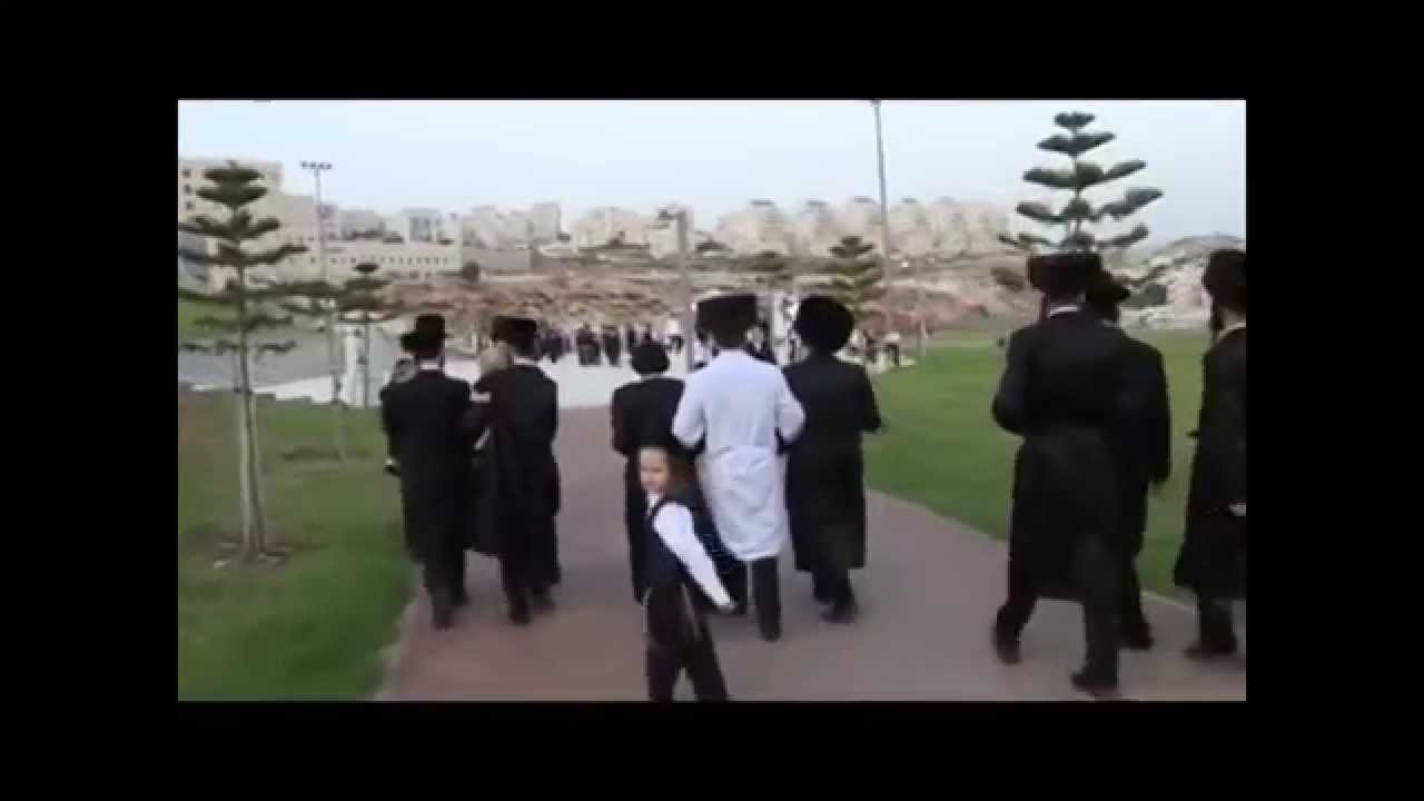 Haredi Jews In Israel: Ultra-Orthodox Jewish Wedding In Israel (Haredi Jews