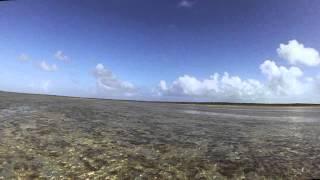 Ankle deep tailing bonfish on fly, Deadman