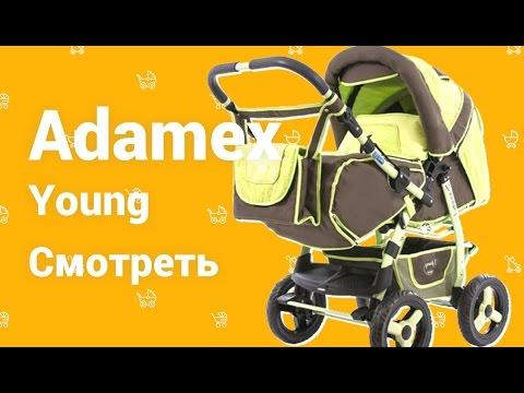 Adamex Young коляска трансформер, видео отзыв