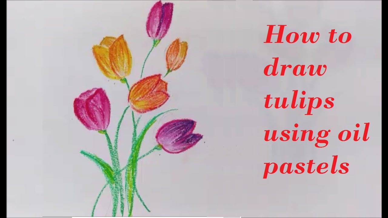 easy tutorial on how to draw tulips using oil pastels