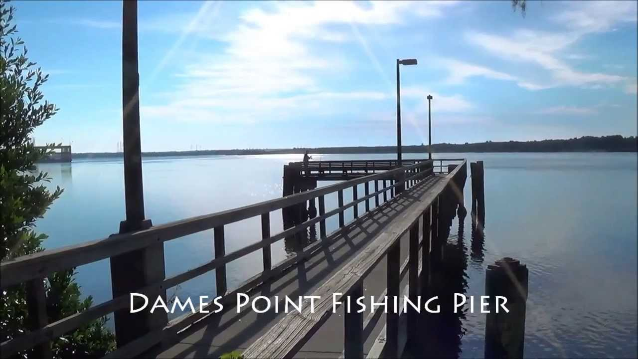 Dames point fishing pier jacksonville florida youtube for Fishing piers in jacksonville fl