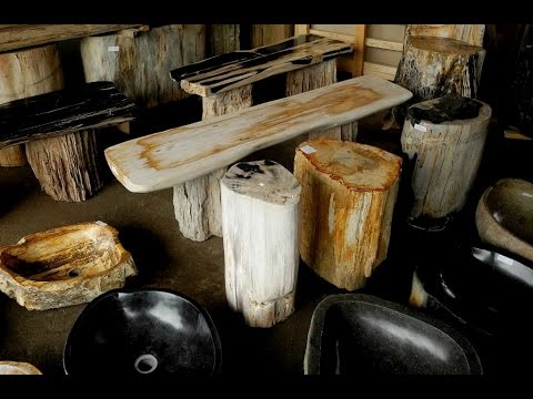 Petrified Wood Sale Online Arizona