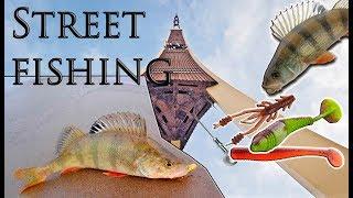 Городская рыбалка! Рыбалка у Рижской телебашни!