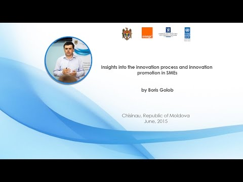 Insights into the innovation process and innovation promotion in SMEs
