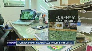 Video Forensic botany helping solve murder and rape cases download MP3, 3GP, MP4, WEBM, AVI, FLV November 2017