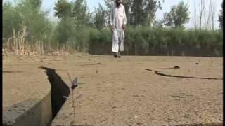 Pakistan Farmer's Plight