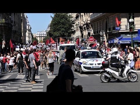 Marche pour la Fermeture des Abattoirs en vue panoramique - Paris 2017