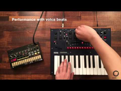 KORG monologue #4 | Performance with volca beats