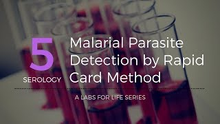 Malarial Parasite Detection by Rapid Card Method