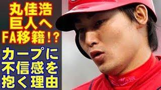 広島カープの丸佳浩、巨人へFA移籍か!?カープに不信感を持つと言う丸を引き留める事は出来るか?