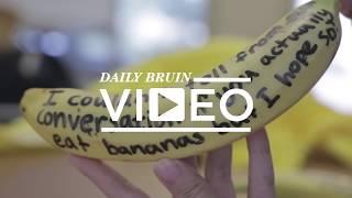 Banana Riebublic thumbnail