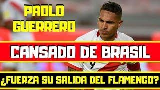 Paolo Guerrero !ESTALLA¡ 🔴 Cansado de Brasil ⚽ ¿Fuerza su SALIDA del Flamengo?