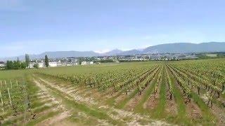 Drone Syma X8G - Vue du Mont Blanc depuis les Vignes de Bourdigny