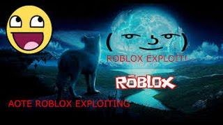 Roblox Exploit : Infinite Jump.exe