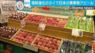 輸入規制が強化のタイで・・・日本の青果物の商談会(19/08/07)