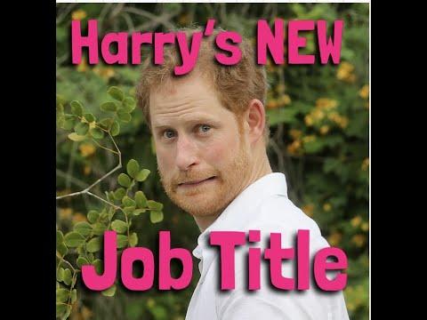 Harrys NEW Job Title 🤣🤣