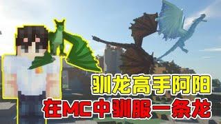 我的世界mod:史诗级龙模组,阿阳教你如何成为一名驯龙高手