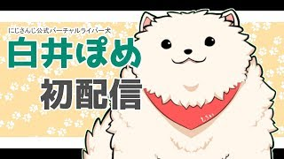 【喋れる犬】白井ぽめ初配信!【にじさんじ】