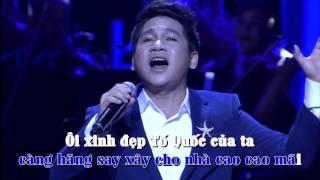 Những Ánh Sao Đêm - Trọng Tấn [Lyric] | Liveshow Đêm Nhạc Trọng Tấn | FULL HD 1080p