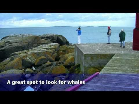 Campobello Island, New Brunswick Bay of Fundy Travel Show Episode 13