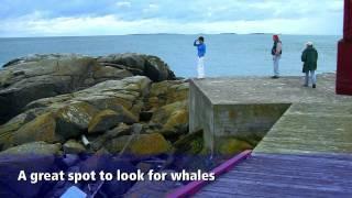 Campobello Island, New Brunswick Bay of Fundy Travel Show Episode 13