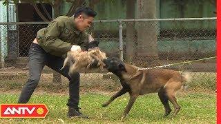 Cách đối phó với chó dữ từ chuyên gia huấn luyện chó nghiệp vụ (P2) | Kỹ năng sống [Số 17] | ANTV