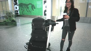 Picking Up The Girlfriend In The Airport Jay Wong Vlog 29
