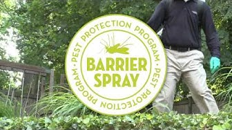 Fall River and the South Shore Best Mosquito Control Video