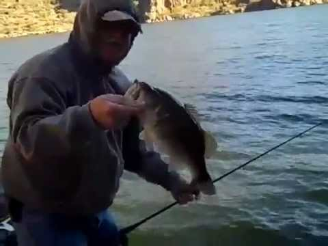 Bass fishing saguaro lake arizona 01 01 youtube for Saguaro lake fishing report