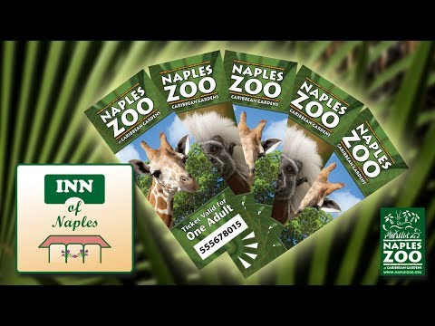 Purchase Discount Tickets for Naples Zoo at The Inn of Naples