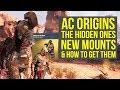 Assassin's Creed Origins DLC NEW MOUNTS & How To Get Them! - The Hidden Ones (AC Origins DLC)