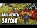 ARK: Survival Evolved - Защищаем ЗАГОН от Denssir! Защищаемся от рейда денсира АХАХА