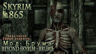 Skyrim s 865 Несмертие Андерпалла