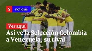 Así ve la Selección Colombia a Venezuela, su próximo rival | Semana Noticias