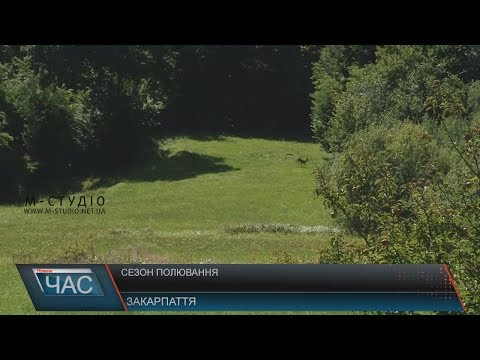 Телекомпанія М-студіо: Сезон полювання