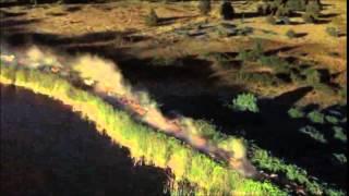 Runaway Horses - Philip Glass