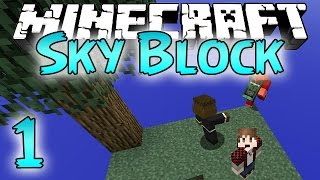Minecraft: SkyBlock Survival Episode 1 - How To Cobblestone Generator!